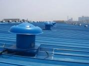 轴流式屋顶乐动体育官网入口